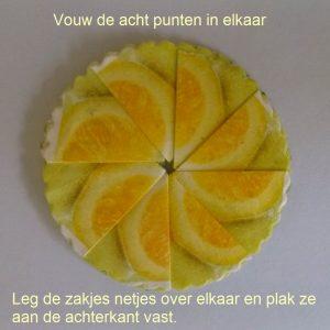 TheezakjeCitroenLydiaCreatief06